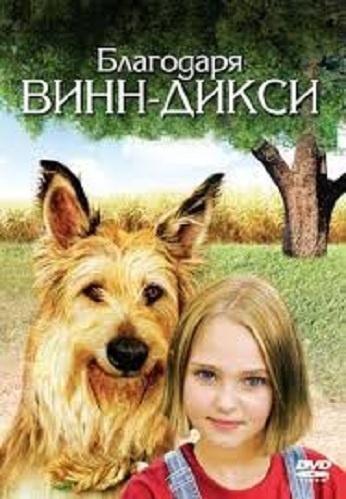 DVD Из-за Винн-дикси