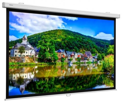 Экран Projecta ProScreen 139x240 HC (10200305)