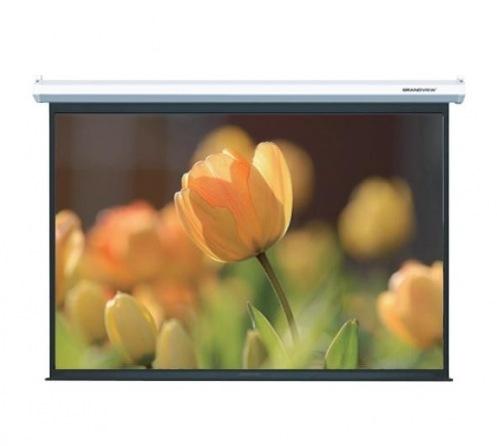 Экран GrandView CB-MP165(16:9)WM5